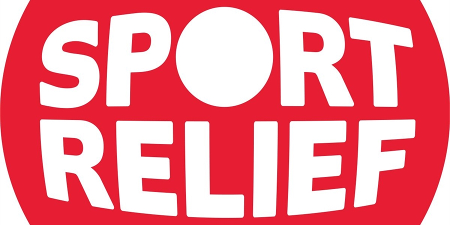 Image result for sports relief